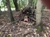 Beaver Shelter building